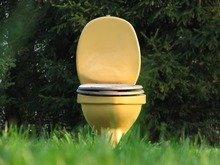 Best Waterless Toilet Reviews